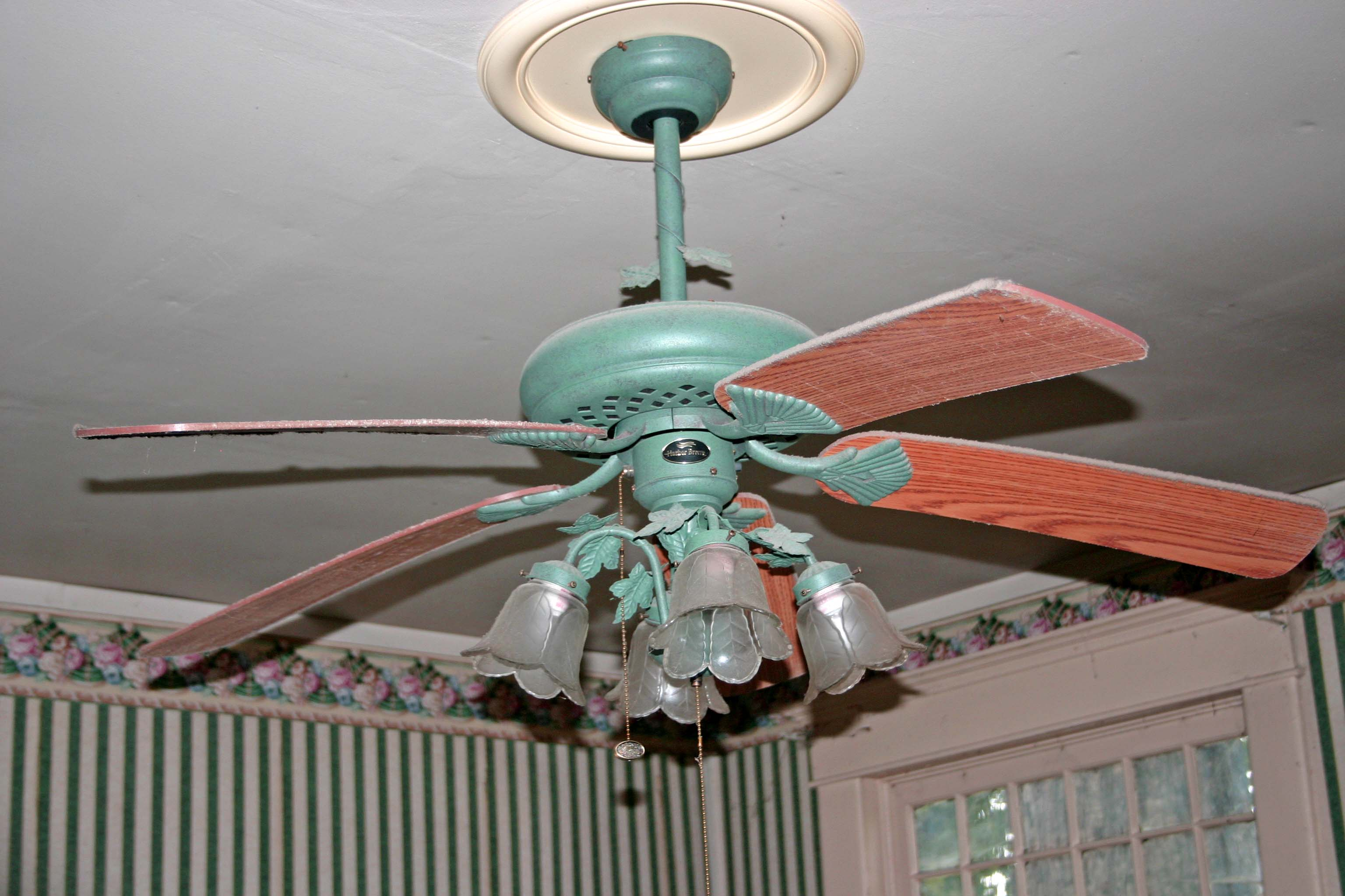 Ceiling Fans In My House